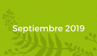 wos-festival-fechas