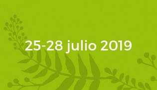 Festival Sinsal fechas 2019