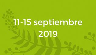 WOS Festival fechas 2019
